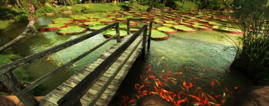 La-Rinconada-Jardines-Turisticos[1]