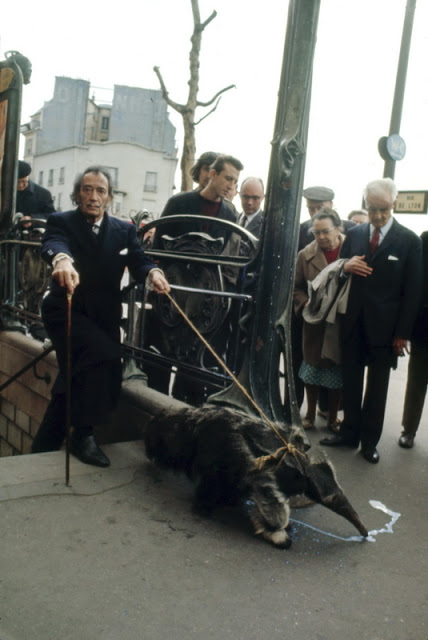 salvador-dali-walking-anteater-paris-france-1969[1]